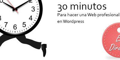 Hangout 5: 30 minutos para construir una Web profesional en directo